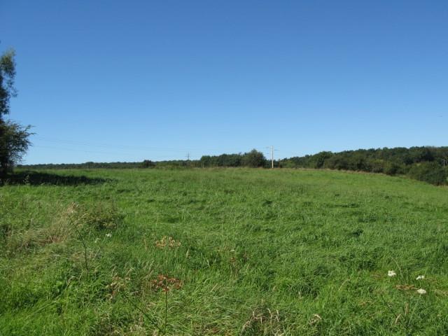 Terrain à bâtir - Florennes Morialmé - #2660641-2