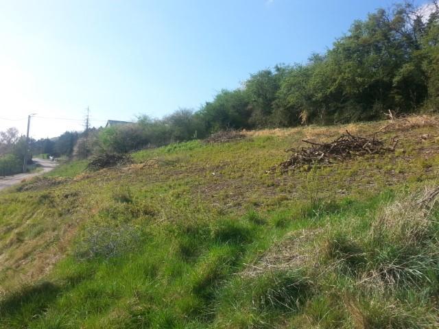 Terrain à bâtir - Philippeville Romedenne - #3010951-3